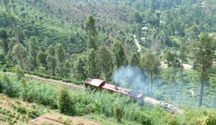 Sue Liu – Sri Lanka – chugging through the tea plantations of Haputale